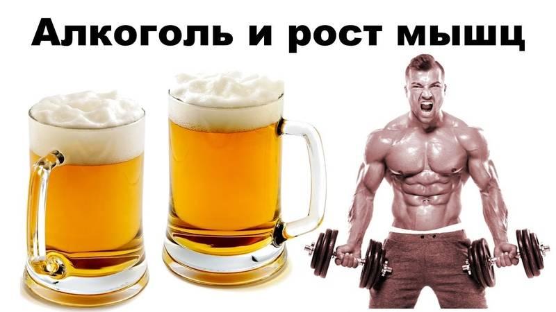Стероиды и алкоголь. последствия   musclefit
