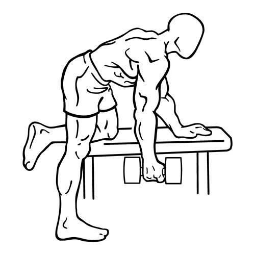 Лучшие упражнения на трицепс для массы и рельефа