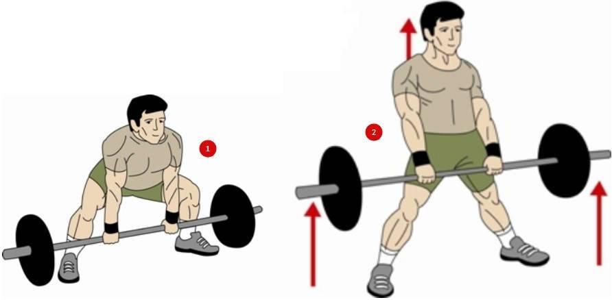 Становая тяга сумо: техника выполнения, вариации