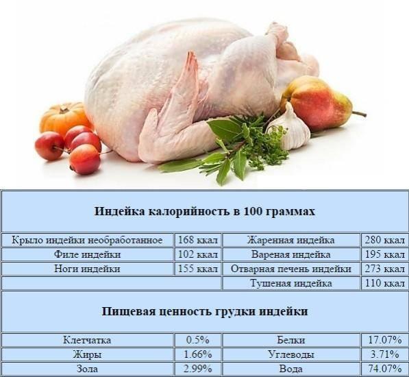 Калорийность крылья kfc – меню в кфс — какую калорийность имеют вкусные твистер и крылышки: показатели калорийности вкусной еды из курочки