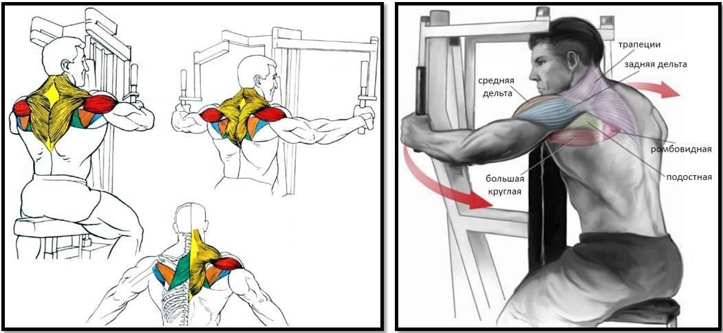 Эспандер бабочка - техника, упражнения, тренировки
