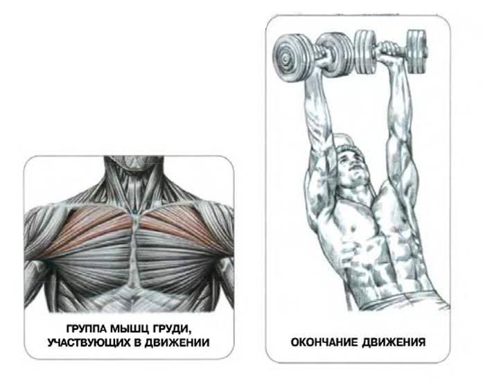 Как быстро накачать верх грудных мышц?