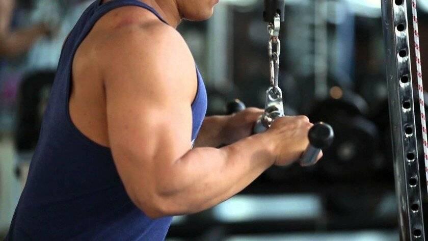Разгибания рук на блоке. качаем трицепс на тренажёре | bestbodyblog.com
