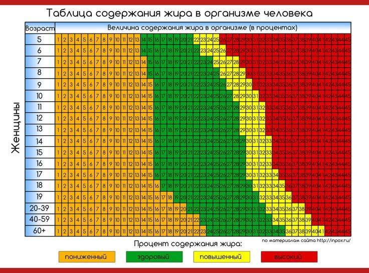 Норма процента жира в теле мужчины и женщины: сколько должно быть жира в организме