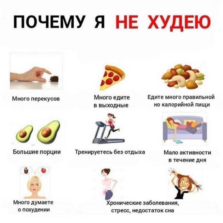 Вес не уходит во время правильного питания