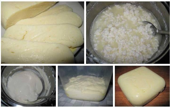 Рецепт домашнего сыра из творога и молока   рецепты сыра   сырный дом: все для домашнего сыроделия