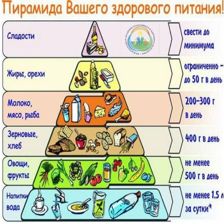 Пирамида питания — википедия. что такое пирамида питания