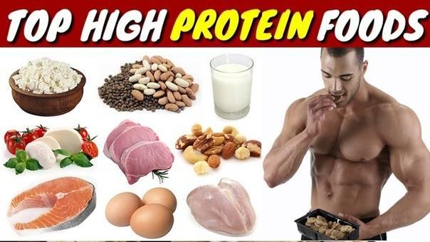 """Белковая недостаточность: почему вам нужен протеиновый """"спортпит"""", даже если вы не занимаетесь спортом   lady.tut.by"""