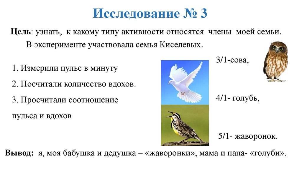 Как переделать сову в жаворонка ‒ насколько реально изменить свой хронотип | городработ.ру