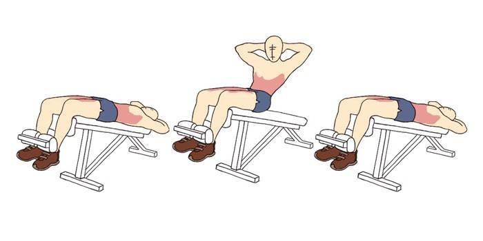 Скручивания на скамье с наклоном вниз (римском стуле) фото и видео