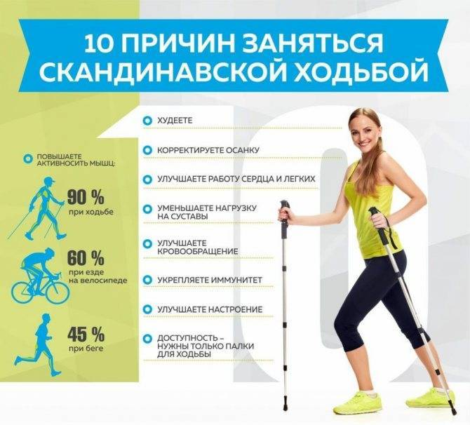 Тренируем 90% мышц за полтора часа: скандинавская ходьба