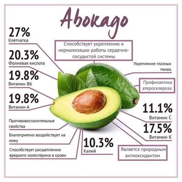 Авокадо: польза и вред для организма, применение в косметологии
