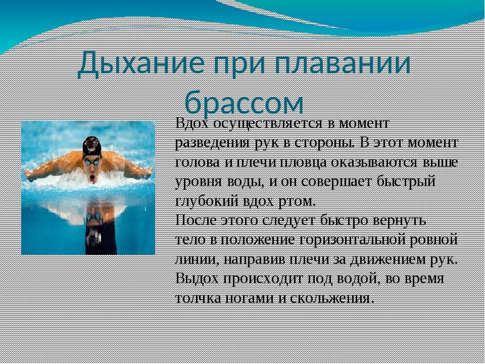 Плавание кролем – описание стиля, техника, советы