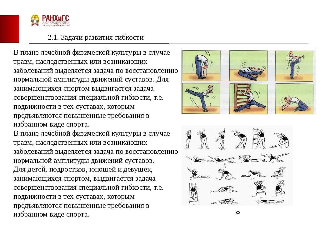 Комплекс упражнений для развития ловкости