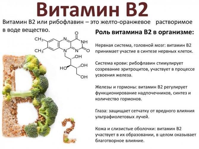 Аминокислоты и пептиды: польза и содержание в продуктах :: инфониак
