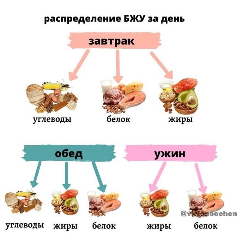 Правильное питание: основные принципы, меню, советы начинающим :: здоровье :: рбк стиль