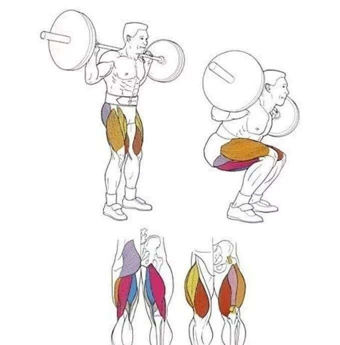 Полуприсед со штангой на спине (приседания сумо) — steelchar
