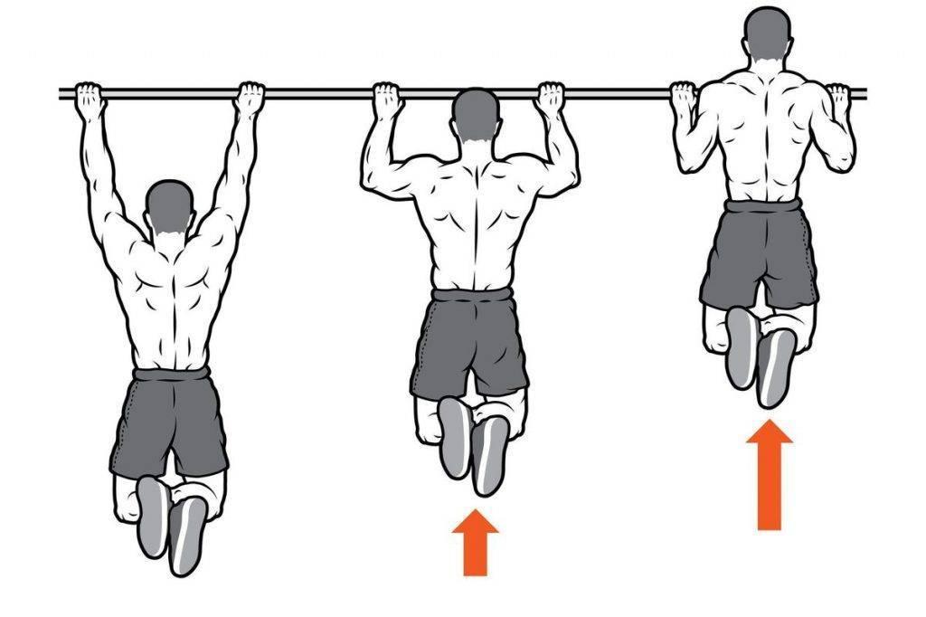 Развитие мышц спины: упражнения на турнике помогут накачать спину   rulebody.ru — правила тела