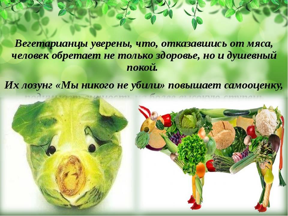 Вегетарианец или веган: в чем отличия