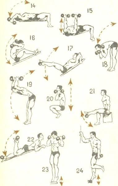 12 лучших упражнений с гантелями дома: для мужчин и женщин, видео :: здоровье :: рбк стиль