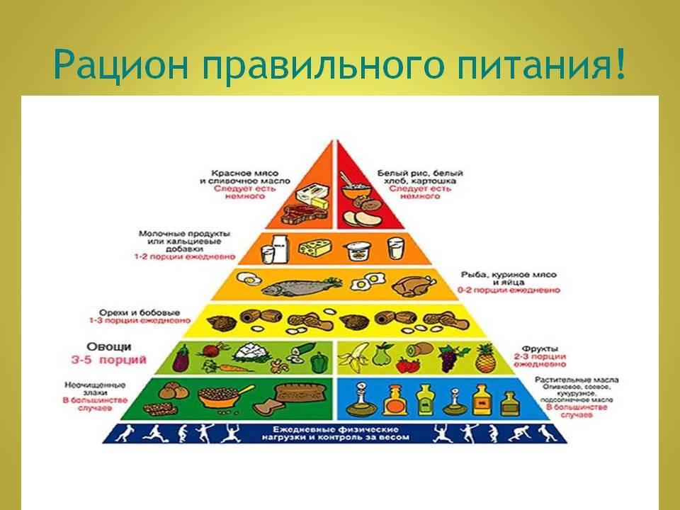 Режим питания: распределение рациона