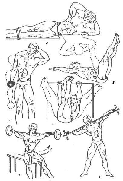 Упражнения для шеи. как накачать мышцы шеи