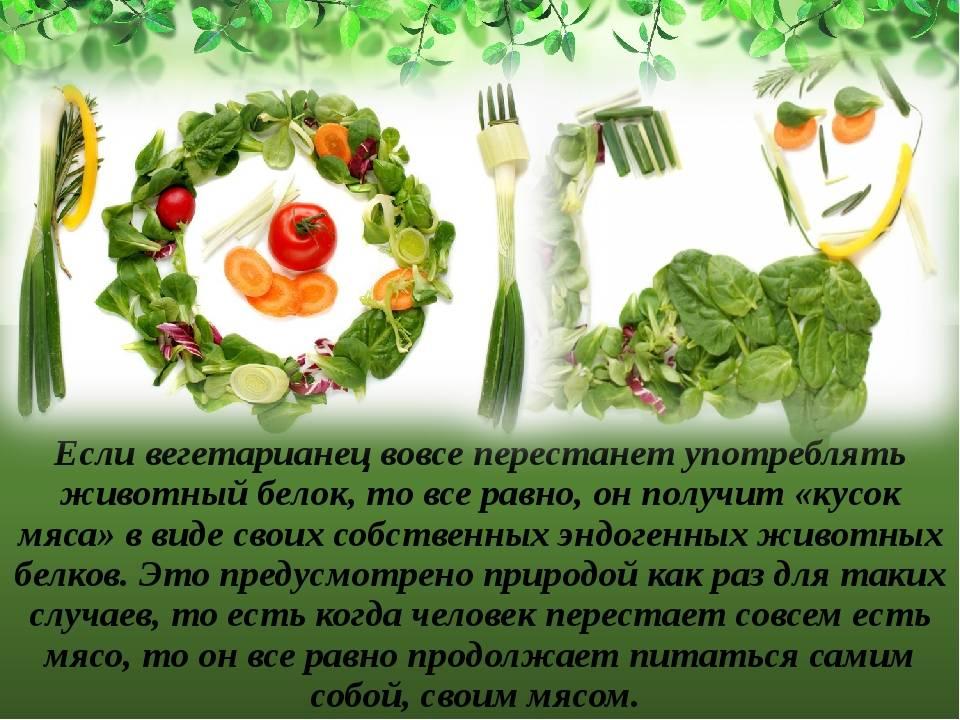 Вегетарианство: вред и польза, мнение врача, аргументы за и против отказа от мяса   азбука здоровья