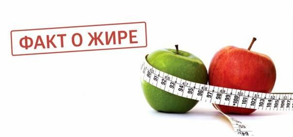 Как отвечать на вопросы про похудение? | на диетах