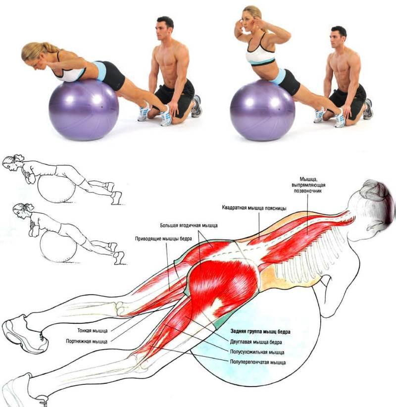 Гиперэкстензия для спины // экстензия упражнение
