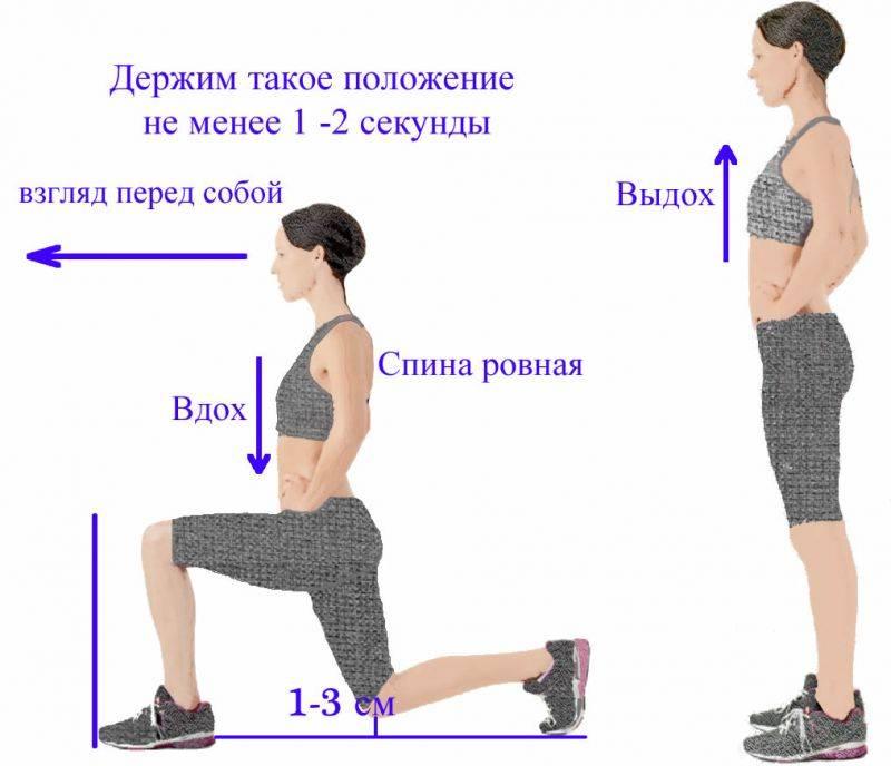 Выпады назад: техника выполнения для каждой ноги, какие мышцы работают