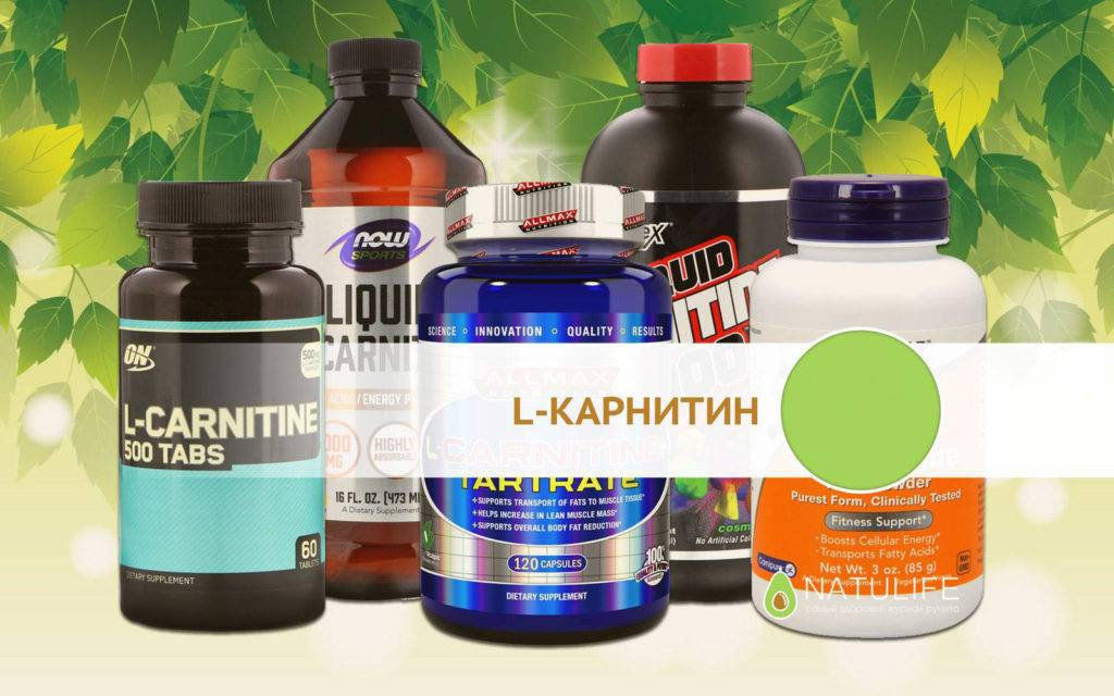 Л-карнитин: какой лучше для похудения | musclefit