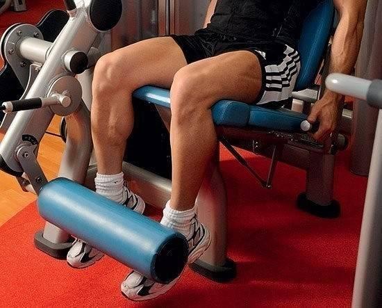 Тренировка ног на массу: программа для мужчин и девушек