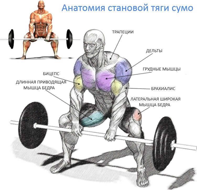 Классическая становая тяга (часть 1)— правильная техника выполнения для мужчин!
