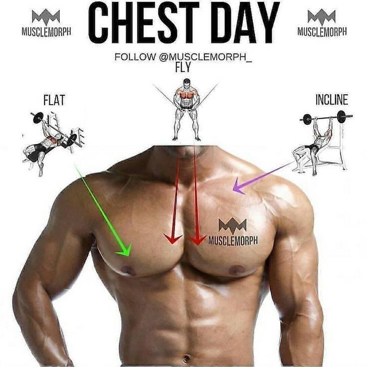Как убрать жир с груди у мужчин: тренировки на грудные мышцы в домашних условиях и в зале