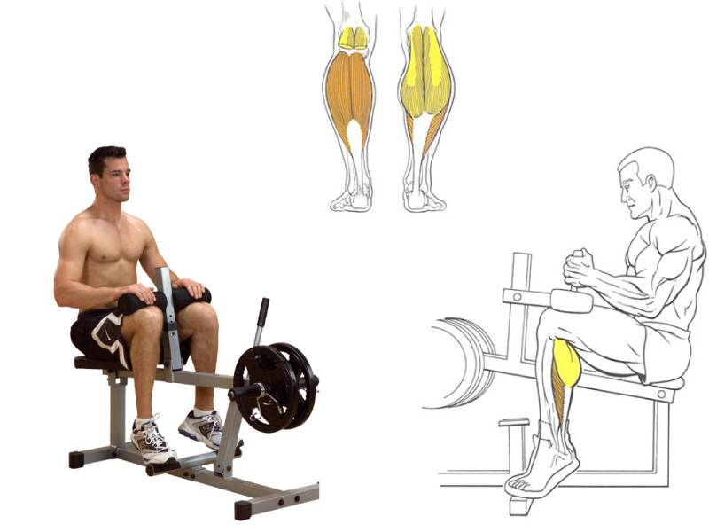 Как накачать икроножные мышцы в домашних условиях