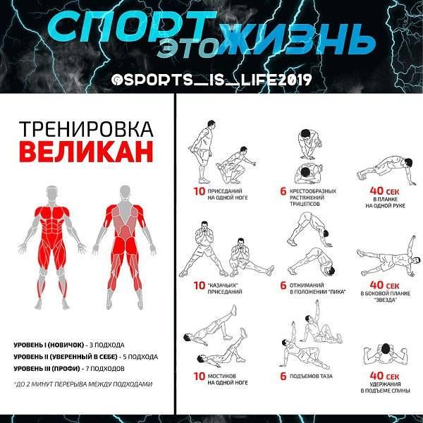 Как увеличить силу рук? упражнения для рук в домашних условиях - tony.ru