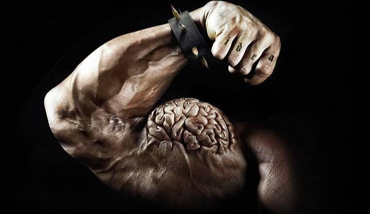 Мышечная память или сколько раз в неделю нужно тренироваться?