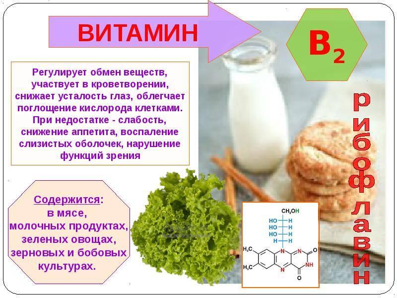 Глюкозамин в продуктах питания: какие продукты богаты глюкозамином и хондроитином  | артракам