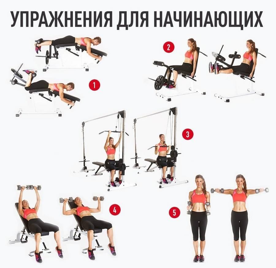 Как составить программу тренировок в тренажёрном зале | бомба тело