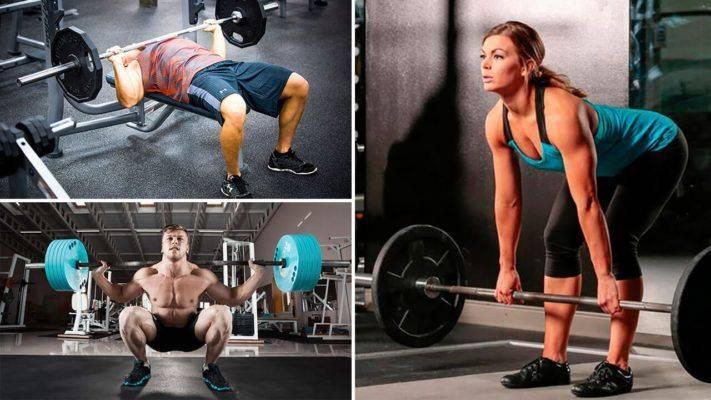 Программа тренировок в тренажерном зале для мужчин (для начинающих) | fitbreak! всё о фитнесе и бодибилдинге