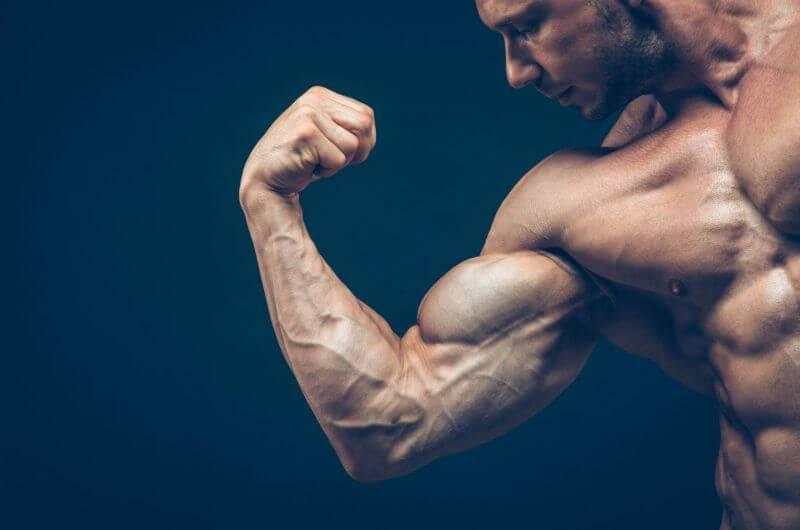 Увеличь мышцы! научно обоснованные решения для максимального мышечного роста | fpa