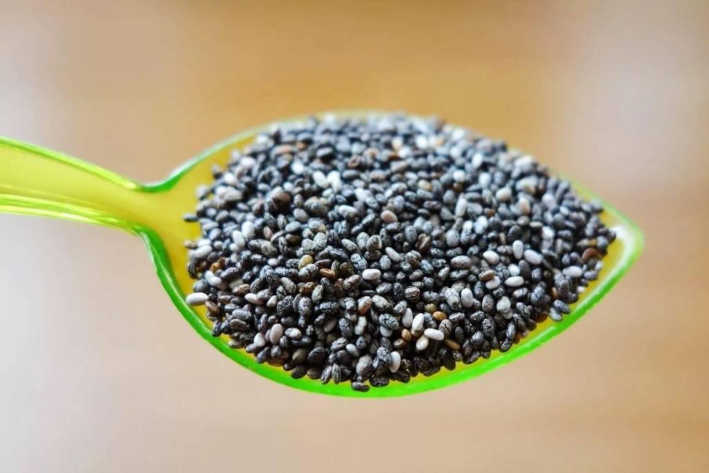 Семена чиа: польза или вред для организма, как употреблять