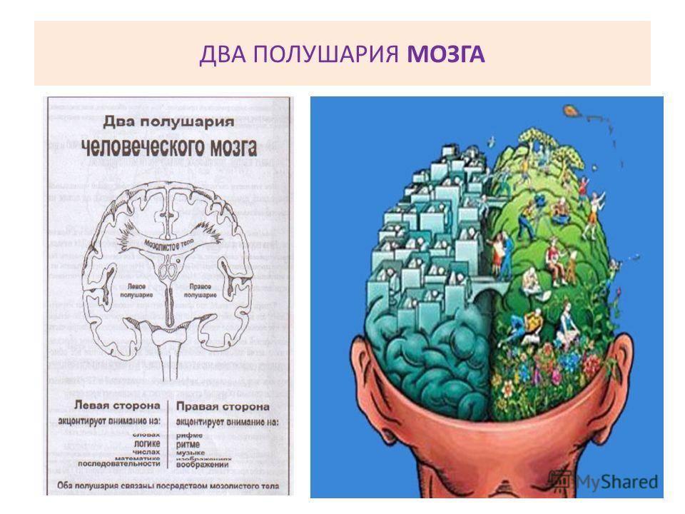 Тренировка ума с помощью гимнастики для мозга