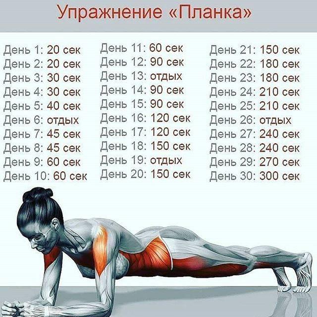 Упражнение планка на 30 дней: виды планок, техника и эффекты от тренировок, расписание занятий | xn--90acxpqg.xn--p1ai
