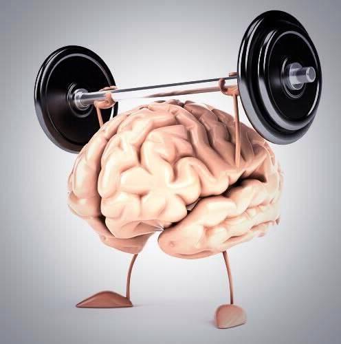 Неочевидная связь мозга и кишечника: как это влияет на здоровье - причины, диагностика и лечение