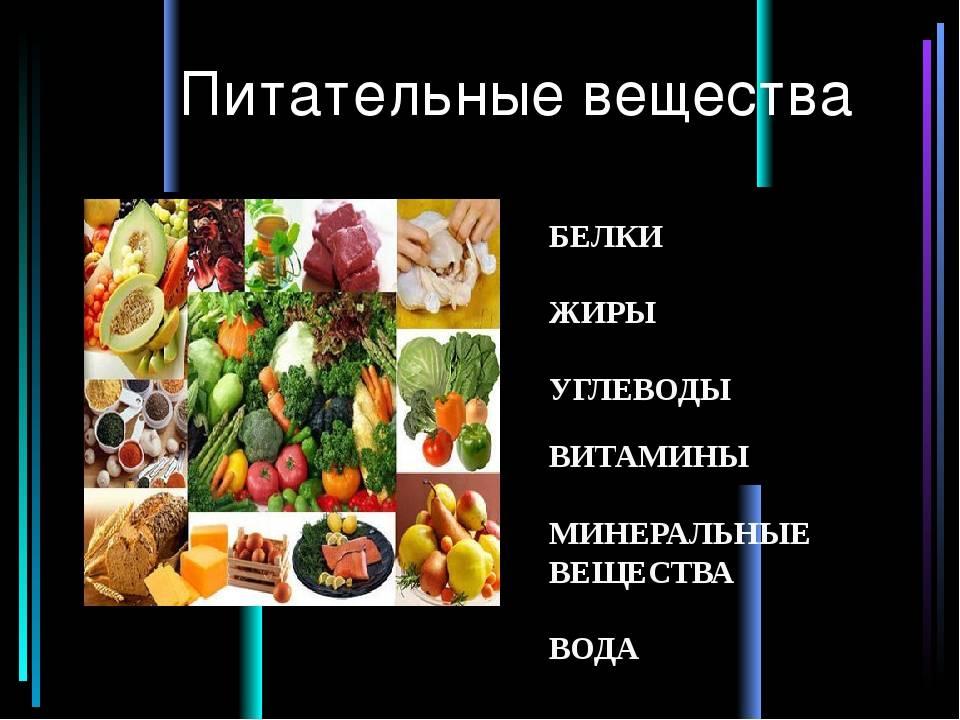 Сбалансированное питание: классическая теория   компетентно о здоровье на ilive