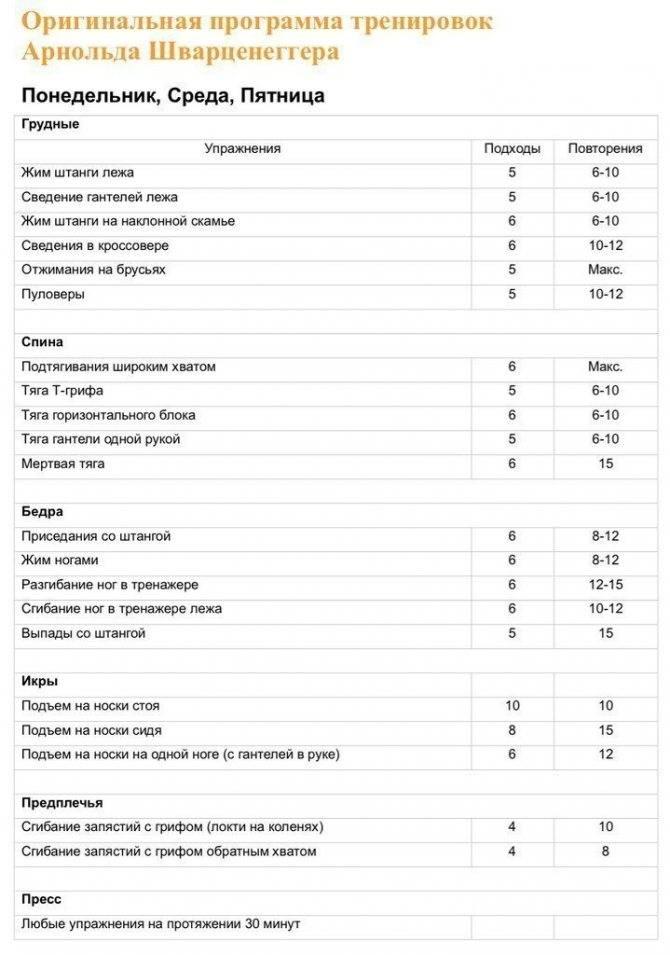 Готовый и эффективный трехдневный сплит для набора мышечной массы эктоморфу