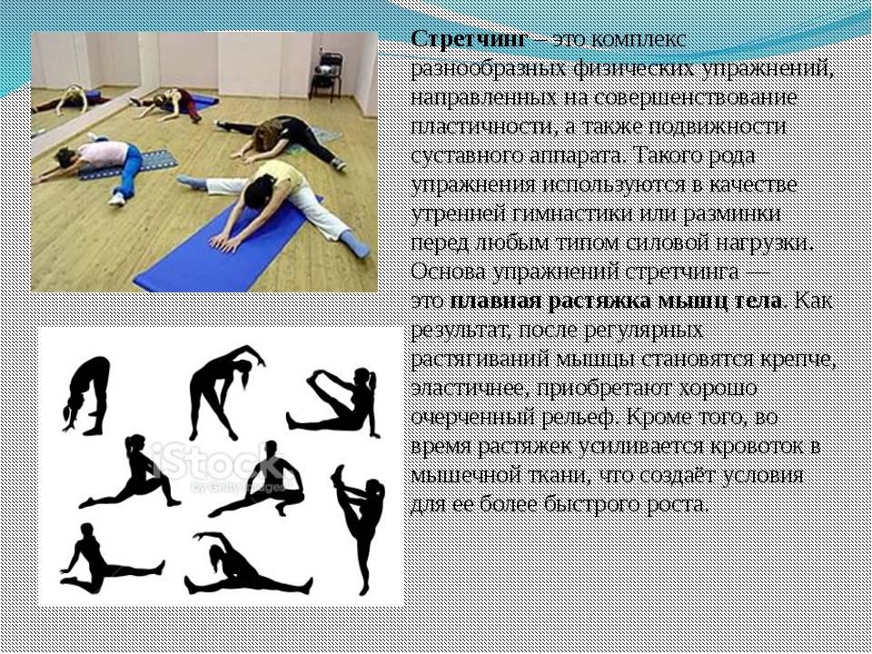 Упражнения на гибкость: как развивать, для чего нужна в силовых видах спорта