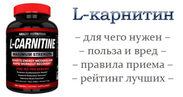 L-карнитин, витамин b11: инструкция по применению для похудения | food and health