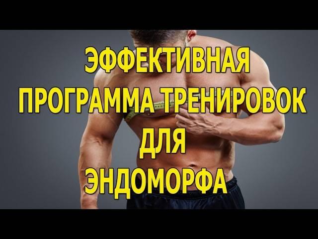 Питание по типам телосложения для мужчин: эктоморф, эндоморф, мезоморф   курсы и тренинги от лары серебрянской